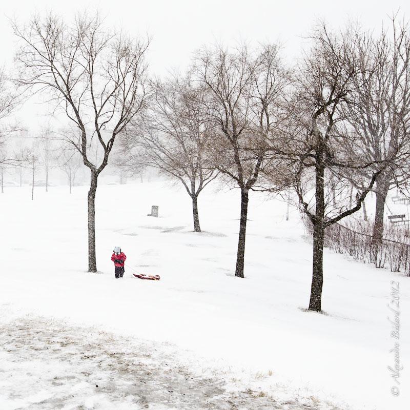 Montr al sous la neige alexandre b dard photographe 514 for Patinoire exterieur montreal