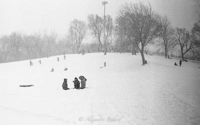 Parc Pélican, Rosemont