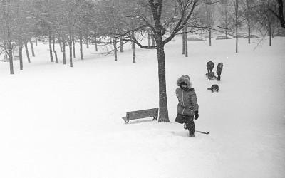 Glissade au parc Lafond, Rosemont